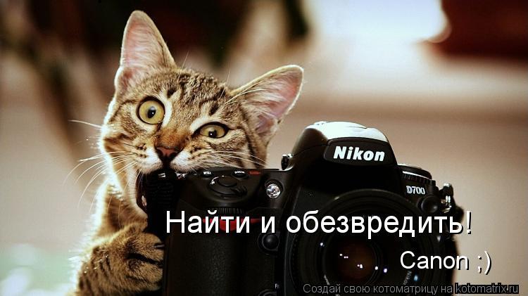 Котоматрица: Canon ;) Найти и обезвредить!