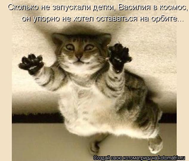 Котоматрица: Сколько не запускали детки, Василия в космос, он упорно не хотел оставаться на орбите...
