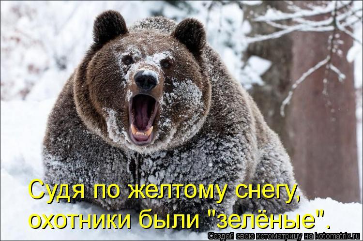 """Котоматрица: Судя по желтому снегу, охотники были """"зелёные""""."""