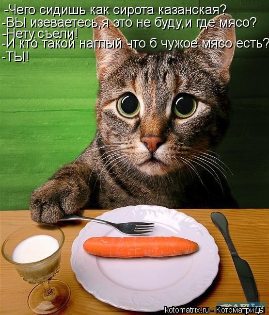 Котоматрица: -Чего сидишь как сирота казанская? -ВЫ изеваетесь,я это не буду,и где мясо? -Нету,съели! -И кто такой наглый что б чужое мясо есть? -ТЫ!