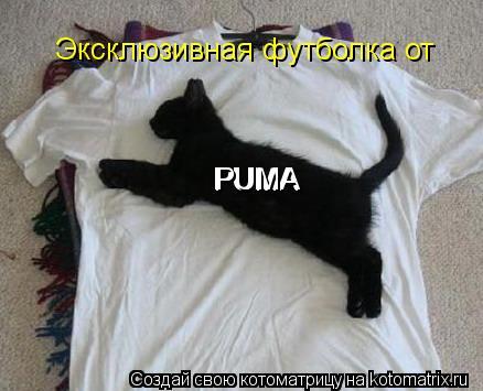 Котоматрица: Эксклюзивная футболка от РUMA РUMA РUMA РUMA