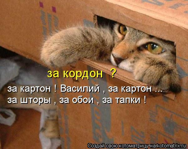 Котоматрица: за кордон  ?   за картон ! Василий , за картон ... за шторы , за обои , за тапки !
