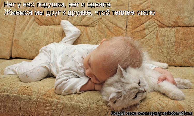 Котоматрица: Нет у нас подушки, нет и одеяла Жмемся мы друг к дружке, чтоб теплее стало