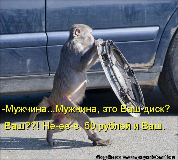 Котоматрица - -Мужчина...Мужчина, это Ваш диск? Ваш??! Не-ее-е, 50 рублей и Ваш.