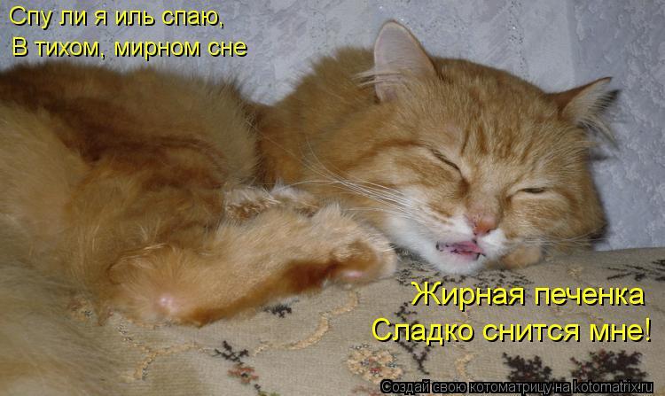 Котоматрица: Спу ли я иль спаю, Жирная печенка Сладко снится мне! В тихом, мирном сне