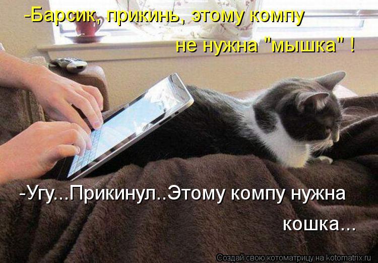 """Котоматрица - -Барсик, прикинь, этому компу не нужна """"мышка"""" ! -Угу...Прикинул..Этом"""