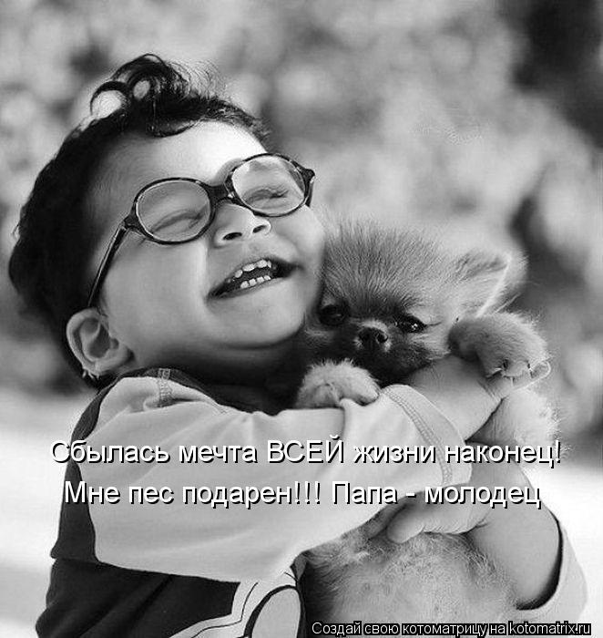 Котоматрица: Сбылась мечта ВСЕЙ жизни наконец! Мне пес подарен!!! Папа - молодец