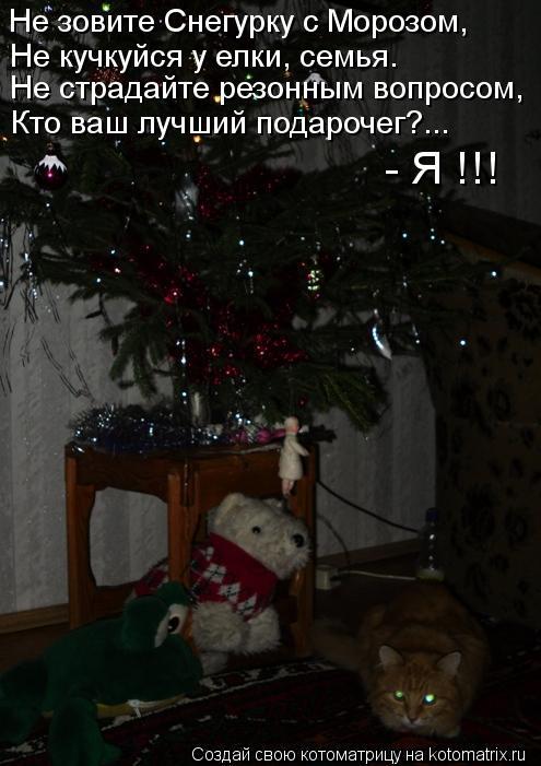 Котоматрица: Не зовите Снегурку с Морозом, Не кучкуйся у елки, семья. Не страдайте резонным вопросом, Кто ваш лучший подарочег?... - Я !!!