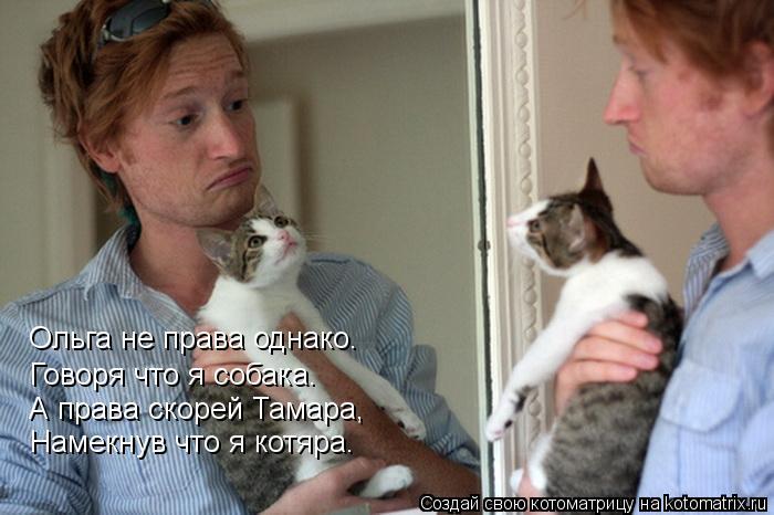Котоматрица: Говоря что я собака. Ольга не права однако. А права скорей Тамара, Намекнув что я котяра.