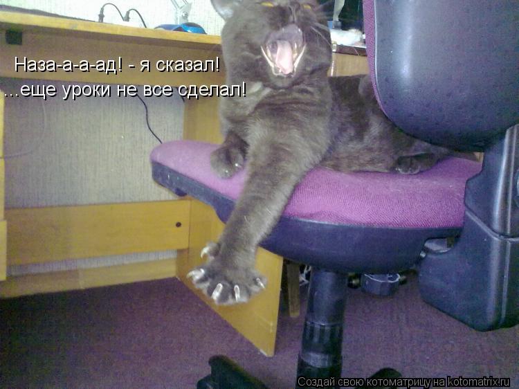 Котоматрица: Наза-а-а-ад! - я сказал! ...еще уроки не все сделал!
