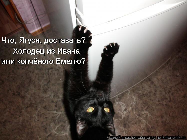 Котоматрица - Что, Ягуся, доставать? Холодец из Ивана, или копчёного Емелю?