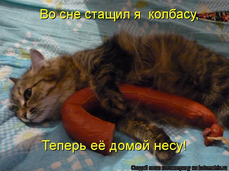 Котоматрица: Во сне стащил я  колбасу, Теперь её домой несу!