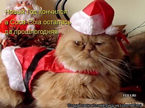 Котоматрица: Новый Год кончился а Coca-Cola осталась да прошлогодняя...