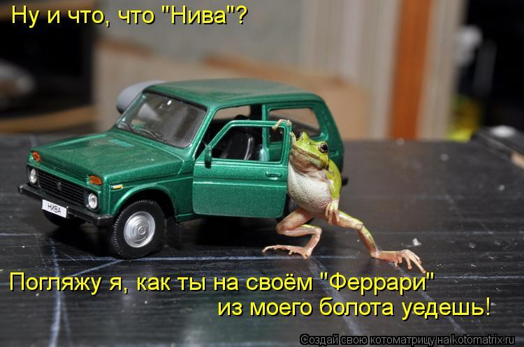 """Котоматрица: Ну и что, что """"Нива""""?  Погляжу я, как ты на своём """"Феррари"""" из моего болота уедешь!"""