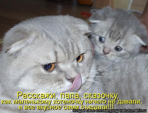 Котоматрица: Расскажи, папа, сказочку, как маленькому котеночку ничего не давали, и все вкусное сами съедали!!!