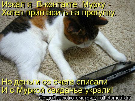 Котоматрица: Искал я «В-контакте» Мурку - Хотел пригласить на прогулку. Но деньги со счета списали И с Муркой свиданье украли!