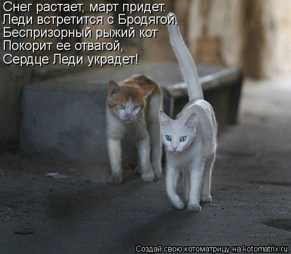 Котоматрица: Снег растает, март придет. Леди встретится с Бродягой, Беспризорный рыжий кот Покорит ее отвагой,  Сердце Леди украдет!