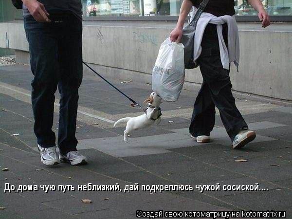 http://kotomatrix.ru/images/lolz/2012/02/27/1123457.jpg