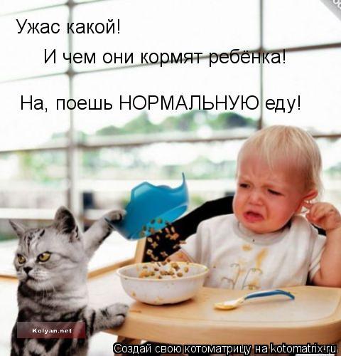 Котоматрица: Ужас какой! И чем они кормят ребёнка! На, поешь НОРМАЛЬНУЮ еду!