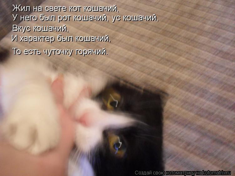 Котоматрица: Жил на свете кот кошачий, У него был рот кошачий, ус кошачий, Вкус кошачий, И характер был кошачий, То есть чуточку горячий.