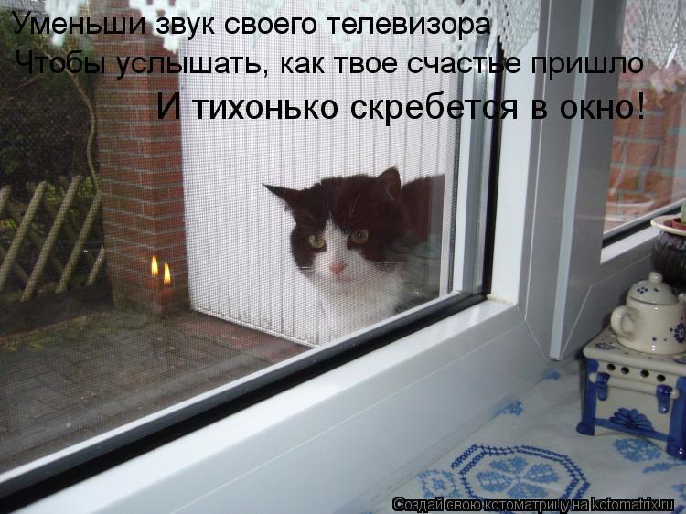 Котоматрица: Уменьши звук своего телевизора Чтобы услышать, как твое счастье пришло И тихонько скребется в окно!
