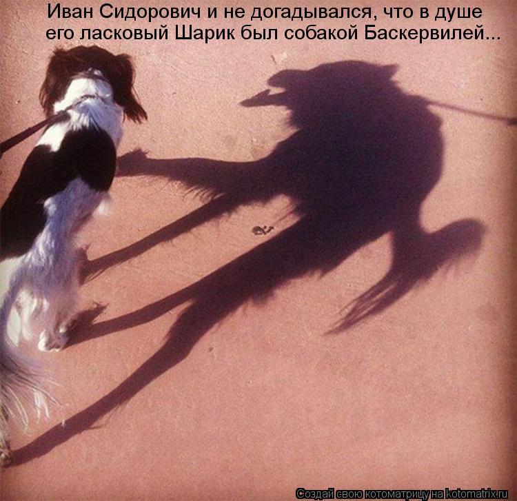 Котоматрица: Иван Сидорович и не догадывался, что в душе его ласковый Шарик был собакой Баскервилей...