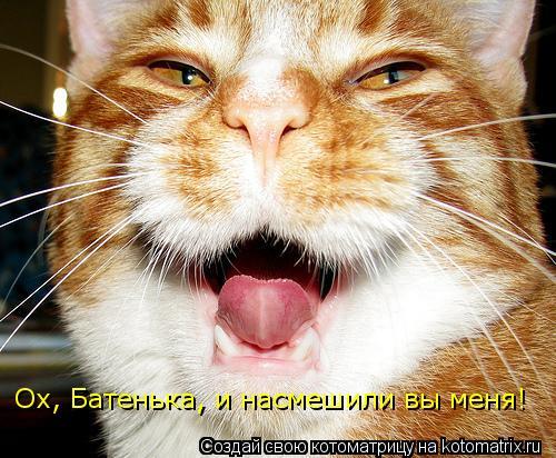 Котоматрица: Ох, Батенька, и насмешили вы меня!