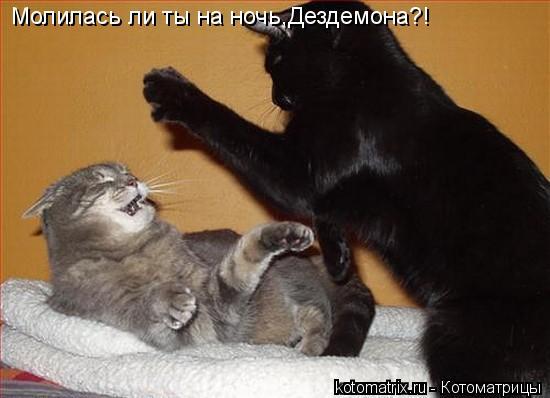 Котоматрица: Молилась ли ты на ночь,Дездемона?!