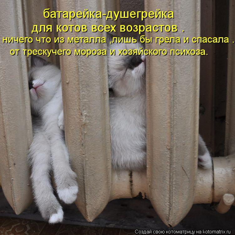 http://kotomatrix.ru/images/lolz/2012/02/28/1124420.jpg