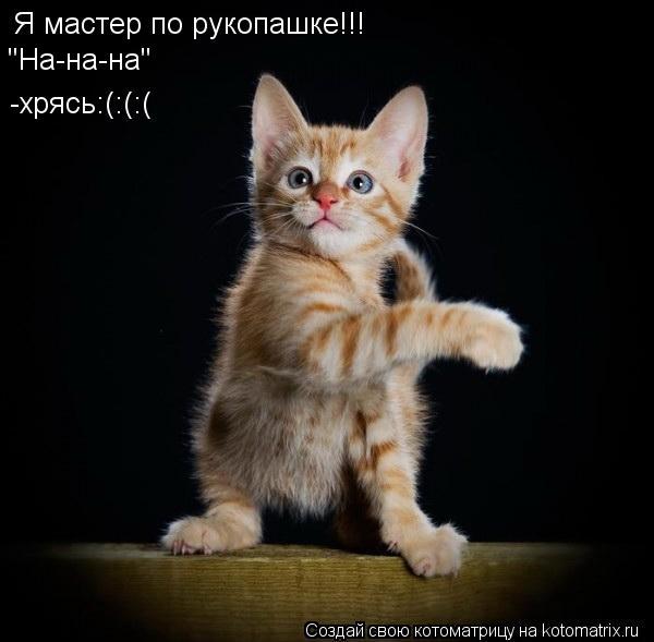 "Котоматрица: Я мастер по рукопашке!!! ""На-на-на"" -хрясь:(:(:("