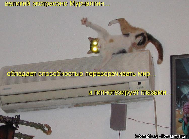 Котоматрица: великий экстрасэнс Мурчалкин... обладает способностью переворачивать мир... и гипнотезирует глазами...