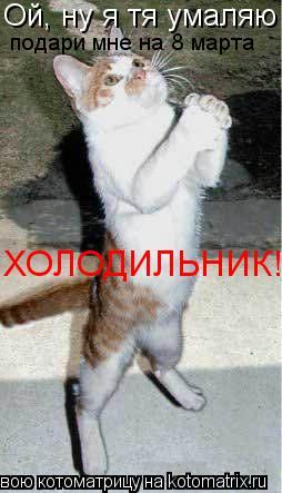 Котоматрица: Ой, ну я тя умаляю подари мне на 8 марта ХОЛОДИЛЬНИК!!!