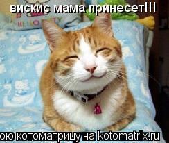 Котоматрица: вискис мама принесет!!!