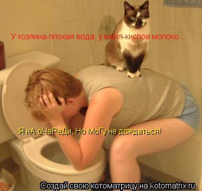 Котоматрица: У хозяина-плохая вода, у меня-кислое молоко... .. Я нА оЧеРеДи, Но МоГу не дождаться!