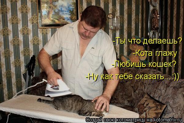Котоматрица: -Кота глажу -Любишь кошек? -Ну как тебе сказать...:)) -Ты что делаешь?