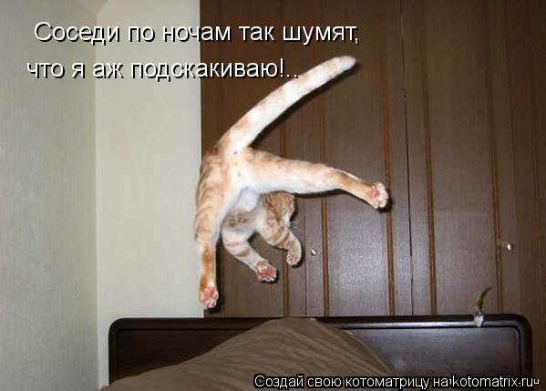 Котоматрица: Соседи по ночам так шумят, что я аж подскакиваю!..