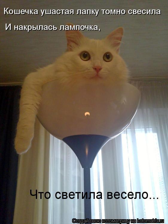 http://kotomatrix.ru/images/lolz/2012/02/29/1125306.jpg