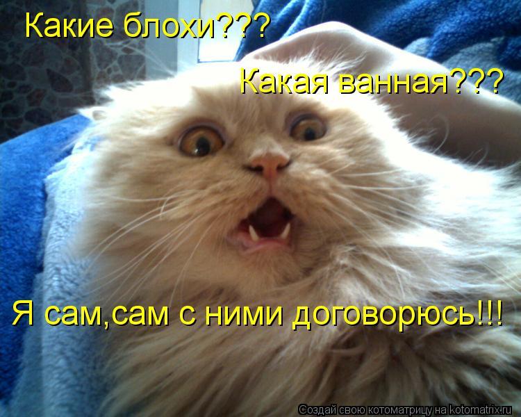Котоматрица - Какие блохи??? Какая ванная??? Я сам,сам с ними договорюсь!!!
