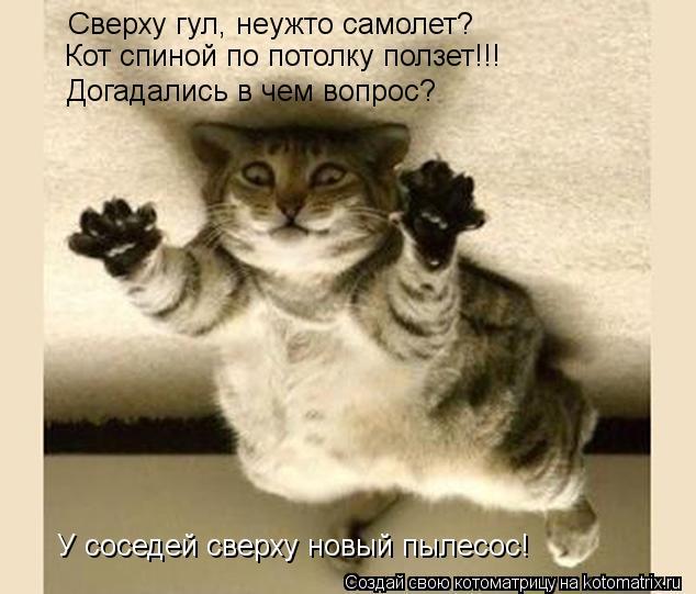 Котоматрица: Сверху гул, неужто самолет? Кот спиной по потолку ползет!!! Догадались в чем вопрос? У соседей сверху новый пылесос!