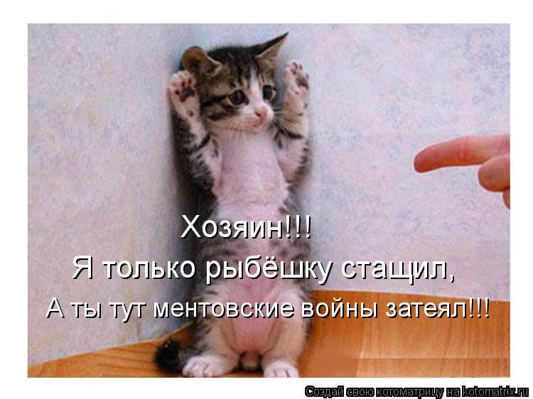 Котоматрица: Хозяин!!! Я только рыбёшку стащил, А ты тут ментовские войны затеял!!!