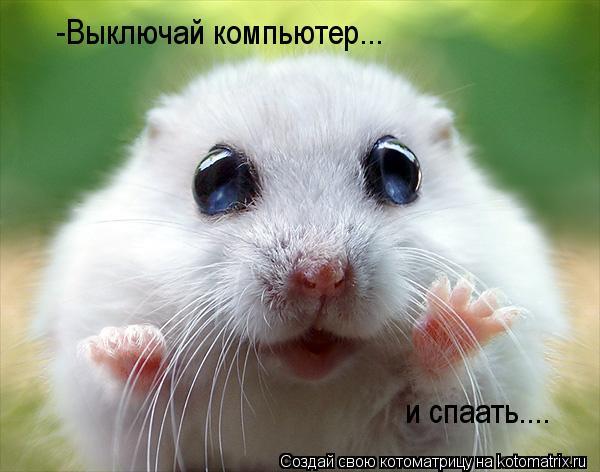 http://kotomatrix.ru/images/lolz/2012/03/01/1126072.jpg