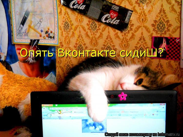 Котоматрица: Опять Вконтакте сидиШ?