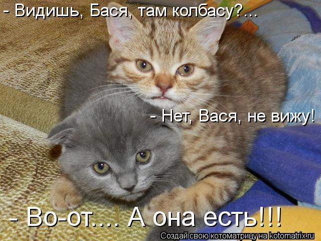 Котоматрица: - Видишь, Бася, там колбасу?... - Нет, Вася, не вижу! - Во-от.... А она есть!!!