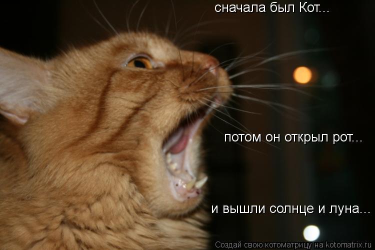 Котоматрица: сначала был Кот... потом он открыл рот... и вышли солнце и луна...