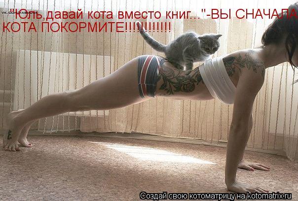 """Котоматрица: """"Юль,давай кота вместо книг...""""-ВЫ СНАЧАЛА КОТА ПОКОРМИТЕ КОТА ПОКОРМИТЕ!!!!!!!!!!!!"""