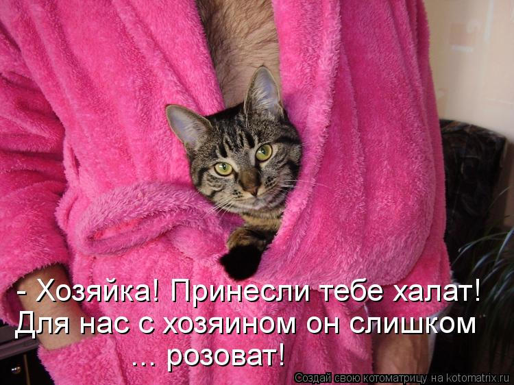 Котоматрица: - Хозяйка! Принесли тебе халат! Для нас с хозяином он слишком  ... розоват!