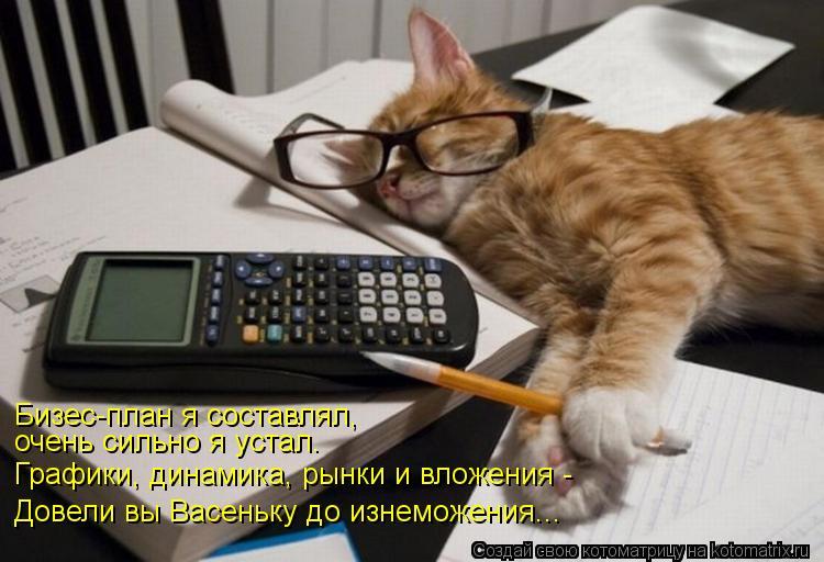 Котоматрица: Бизес-план я составлял, очень сильно я устал. Графики, динамика, рынки и вложения - Довели вы Васеньку до изнеможения...