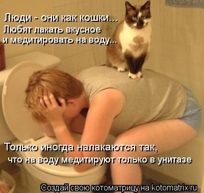 Котоматрица: Люди - они как кошки... Любят лакать вкусное и медитировать на воду... Только иногда налакаются так, что на воду медитируют только в унитазе