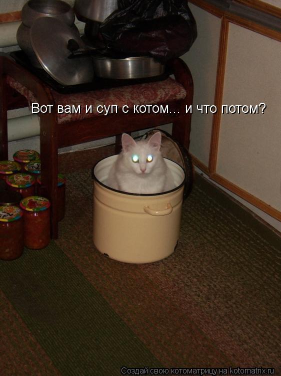 Котоматрица: Вот вам и суп с котом... и что потом?