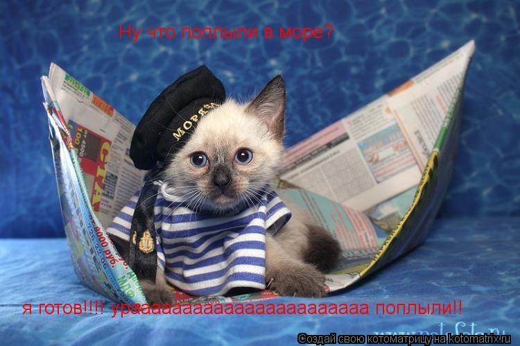 Котоматрица: Ну что поплыли в море? я готов!!!! урааааааааааааааааааааааа поплыли!!